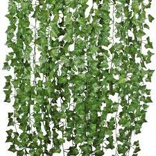 House Plants Illustrated Print Plant Print House Plants Etsy