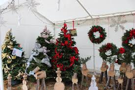 Fresh Christmas Trees Types by Where You Can Buy Christmas Trees In Los Angeles