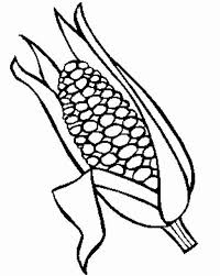Tasty Corn Ear Coloring Page