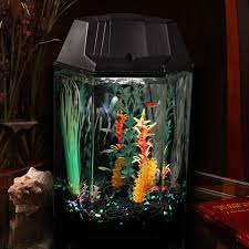 Star Wars Fish Tank Decorations by Hawkeye 1 6 Gallon Hexagon Aquarium Kit Walmart Com