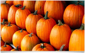 Pumpkin Festival Cleveland Ohio by Celebrate Fall The Huntsburg Pumpkin Festival Coolcleveland