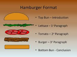 Introduction Com How To Write An Essay Hamburger Style 2