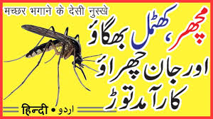 Machar Ko Bhagane Ka Tarika | How To Get Rid Mosquitoes In Your ... How To Remove Mosquitoes From Your Backyard Youtube 25 Unique Mosquito Spray Ideas On Pinterest Natural Mosquito Keep Mosquitoes Out Of Your Yard For A Month And Longer With Ways Repel Accidentally Green To Get Rid Of Bugs In Backyard Enjoy Bbq Picture With Gnats In The House Kitchen Plants Organically 9 Steps Pictures Best Sprays Insect Cop 27 Banish From Next Barbecue Roaches Fleas Ants Repelling Plants Plant Citronella Lemongrass