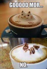 cat coffee grumpy cat s coffee american studies 507