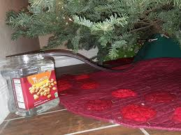 Best Live Christmas Trees For Allergies by Make A Hidden Christmas Tree Watering System 7 Steps With Pictures