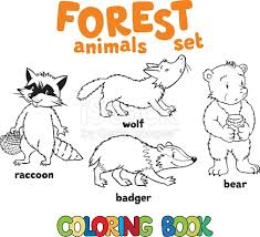 Forest Animals Coloring Book Stock Vector Art 607646978