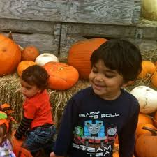 Pumpkin Patch Portland by Our Favorite West Side Portland Pumpkin Patches Momsicle
