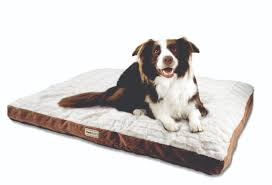 poochplanet thermacare and orthodogs pet beds offer improved