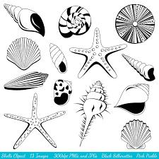 Shells cliparts