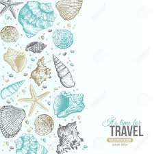 100 Sea Shell Design Summer S Postcard Vector Background With Shells