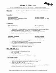 Sample Resume Format For Experienced Lecturer New Extraordinary In Lesson Plan Engineering College Large
