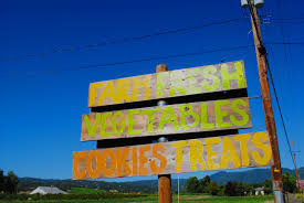 Pumpkin Patch Medford Oregon by What To Do In Southern Oregon Summer Lovin U0027 Peaches At Whites