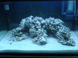 S C A R L E T Reef: Day 11 (9/6/2011): New Aquascape Aquarium Aquascaping Rocks Aquascape Designs Ideas Project Reef Rock 21 Dry Walt Smith Bulk Supply Review Real Generation 4 Digitalreefs News Info How To Live Purple Live Rock Youtube Updated Clear Pics Newbies Attempt At Aquascaping So Far 3reef Design Aquafishvietcom Bring Back The Wall News Builders Keeping Austin Club Walls For A Tank Callorecom River Suggestion Planted Forum