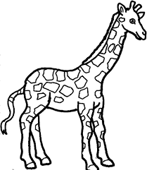 Nice Giraffe Coloring Pages Cool Ideas
