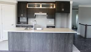 couleur armoire cuisine matériaux ébénisterie yves picher