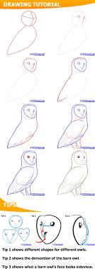 How To Draw A Barn Owl | How To Draw Owls 28 Owl Tattoo Designs Ideas Design Trends Premium Psd Guardians Of Gahoole 1 The Capture Willow Paterson Patersonwillow Twitter Home Ohio Wildlife Center Gifts Fair Trade Fusion Barred Owl My Beautiful World Sponsor An Asian Brown Wood Icbp Barn Owl Thought I Would Try My Hand At These Triguing Owls Owls Dennis Skogsbergh Photographydennis Photography Houses And Nest Boxes For Barred Screech Barn Sale Kate Spade Make It Mine Flap Lyst Exeter Guardian Rd Restaurant Reviews Phone