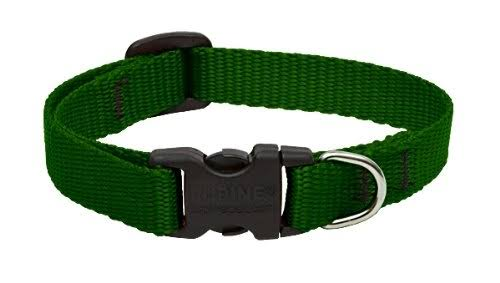 LupinePet Adjustable Dog Collar - Green, 1/2 x 10-16 in