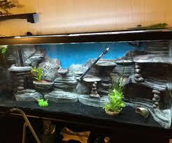 Homemade Lava Lamp Fish Tank by Best 20 120 Gallon Aquarium Ideas On Pinterest Aquarium