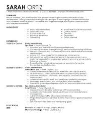Bachelor Degree Resume Sample