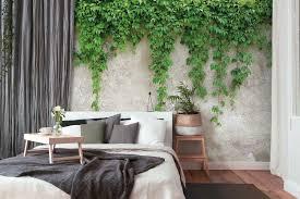 betonmauer mit blätterranken grün grau
