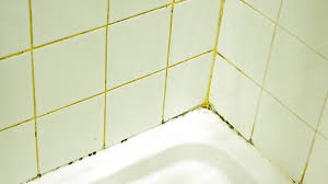 and grout cleaning tips to prevent mold and mildew