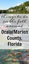 Italian Tile Imports Ocala Florida by The 25 Best Marion County Ideas On Pinterest Marion County
