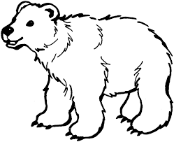 Polar Bear Coloring Pages Printable
