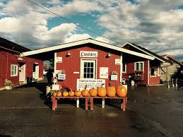 Hunter Farms Pumpkin Patch Olympia Wa by Pick Your Own Pumpkin Patches In Washington State