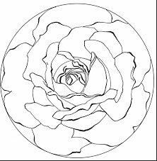 Great Printable Rose Mandala Coloring Pages With And Flower