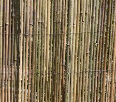 bambusmatte 5m x 1 5m bambus sichtschutzmatte zaun sichtschutz matte geschnitten
