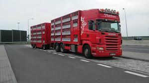 100 Livestock Trucking Companies Transport Livestock Road Transportation Transport Of