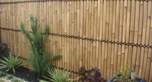 Pergola : Garden Screening Awesome Bamboo Fencing Diy 11 Best ... Install Bamboo Fence Roll Peiranos Fences Perfect Landscape Design Irrigation Blg Environmental Filebamboo Growing In Backyard Of New Jersey Gardener Springtime Using In Landscaping With Stone Small Square Foot Backyard Vegetable Garden Ideas Wood Raised Danger Garden Green Privacy For Your Decorative All Home Solutions Spiring And Patio Small Square Foot Vegetable Gardens Oriental Decoration How To Customize Outdoor Areas Privacy Screens
