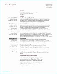 Resume Professional Summary Example Beautiful Writing A Resume ... Sample Curriculum Vitae For Legal Professionals New Resume Year 10 Work Experience Professional Summary Example Digitalprotscom Customer Service 2019 Examples Guide View 30 Samples Of Rumes By Industry Level How To Write A On Of Qualifications Fresh For Best Perfect Retail Included Unique Atclgrain Free Career Smaryume Manager Teachers