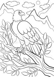 Coloring Pages Wild Birds Cute Eagle On The Tree Branch Stock Vector Art 546206088