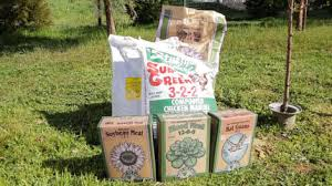 Natural Fertilizer For Pumpkins by When U0026 How To Fertilizer Your Fruit Trees Organic Gardening Blog