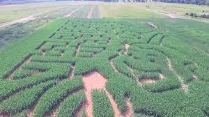 Pumpkin Patch Fredericksburg Va by Belvedere Plantation Corn Maze 2017 Youtube