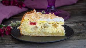 rhabarber quark kuchen mit quarkölteig tränchenkuchen