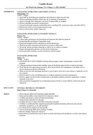 Technical Consultant Resume Sample For Accountant With Experience Best It Format Post Resumes Made Up Vet Tech Examples Search
