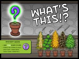 How Do I Get OG CHEESE? – By East Side Games Mjpg Local Cheese Grandpas Cheesebarn Family Barn Free Farm Game Online Mousebot Android Apps On Google Play Penis Mouse And Fruit Bat Boss Fights South Park Youtube Best 25 Goat Games Ideas Pinterest Recipe Date Goat Cheese Stardew Valley The Planner A Cool Aide For An Amazing Ovthehillier July 2017 318 Best Super Bowl Party Images Big Game Football Appetizers Boards Different Centerpiece Outdoor