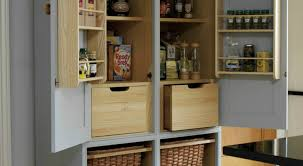 Pantry Cabinet Organization Ideas by Uncommon Kitchen Organization Ideas For Pantry Tags Kitchen