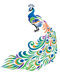 Free Peacock Feather Clip Art