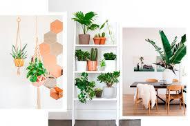 dormir avec une plante dans la chambre 10 façons de décorer votre intérieur avec des plantes