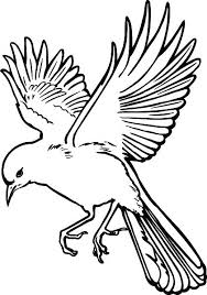 bird drawing outline dove drawings flying bird outline drawing