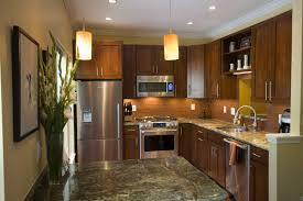 Narrow Kitchen Design Ideas by Kitchen Design Ideas And Photos For Small Kitchens And Condo