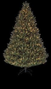 Artificial Douglas Fir Christmas Tree by Have A Cosy Holiday Season Toronto Star