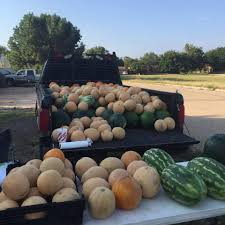 Fertilizer For Pumpkins And Watermelons by Snyder Nursery Home Facebook