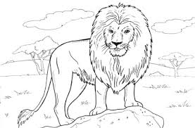 Click To See Printable Version Of African Lion Coloring Page