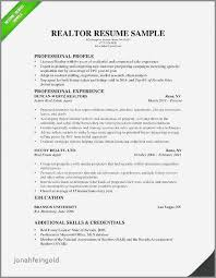 Real Estate Broker Resume Best Of Example Realtor Lovely Agent