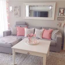 Apartment Living Room Decorating Ideas On A Budget Extraordinary