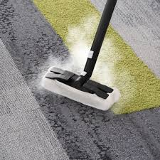 Kraus Carpet Tile Maintenance by Reliable 500cc Brio 500cc Steam With 25 Piece Accessory